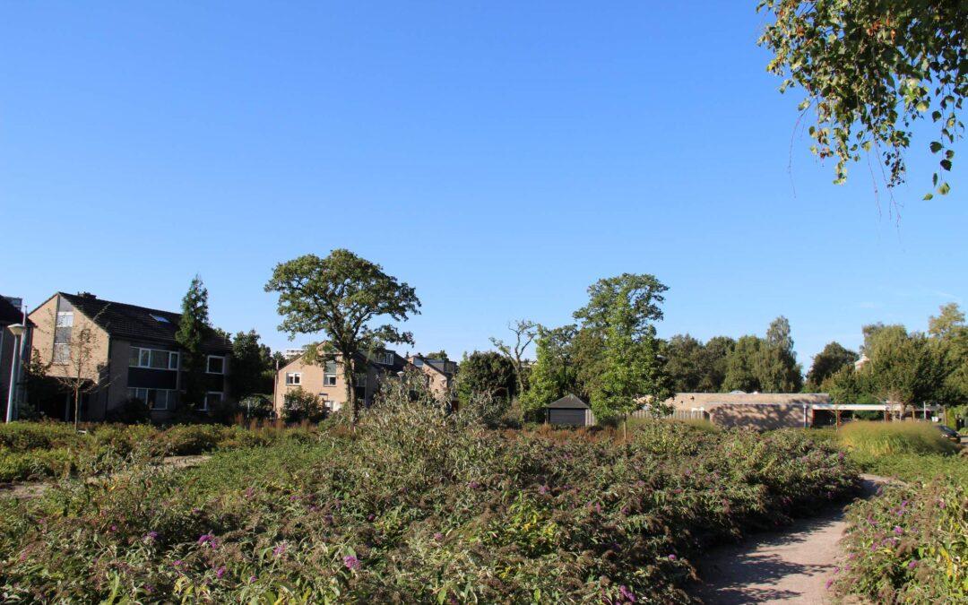 Steinwijk Ede